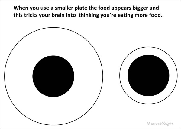 eat less by using smaller plates - Motiveweight_Blogspot_com