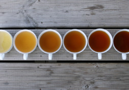 Tea anyone? Let's chat about tea varieties and health benefits
