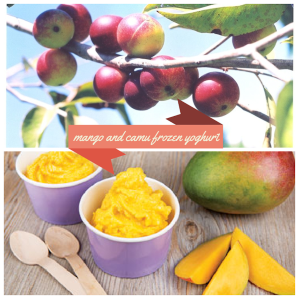 mango and camu frozen yoghurt 599x599 - Frozen Mango and Camu Camu Yoghurt