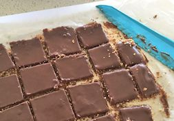 Raw decadent chocolate fudge slice