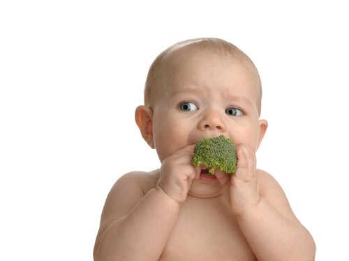 10 nutritious finger foods for babies