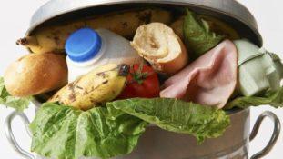 sprechi cibo grande 311x175 - festive food waste