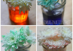 5 Cool Educational STEM Projects To Kick-start Your Child's Creative Mind